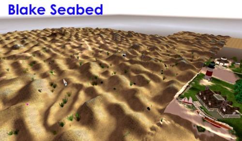 Blake seabed